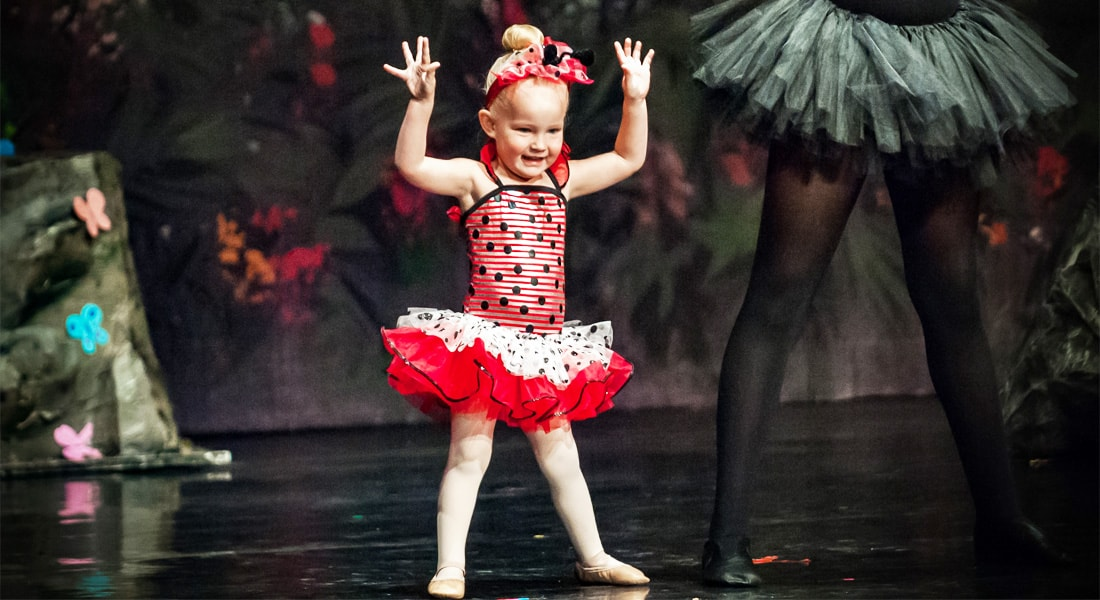 LadyBug Fairy Tale Ballet DanceWorks Performing Art