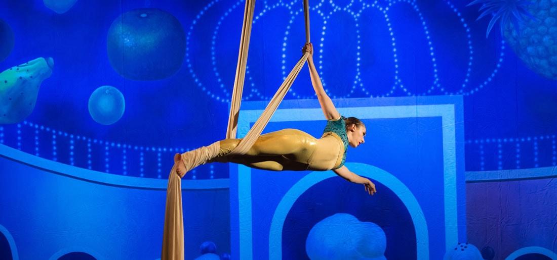 Aerial Silks at DanceWorks Performing Arts in Vancouver WA
